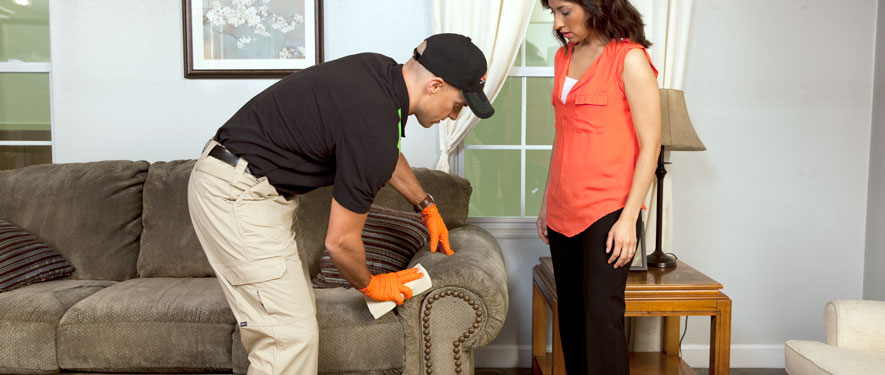Issaquah, WA carpet upholstery cleaning