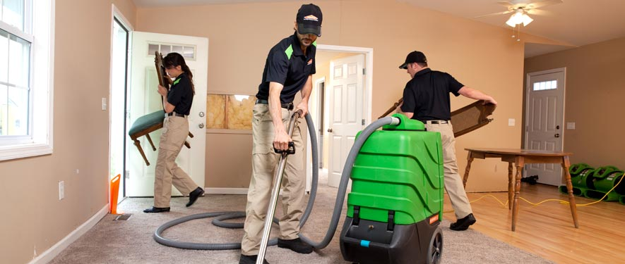 Issaquah, WA cleaning services