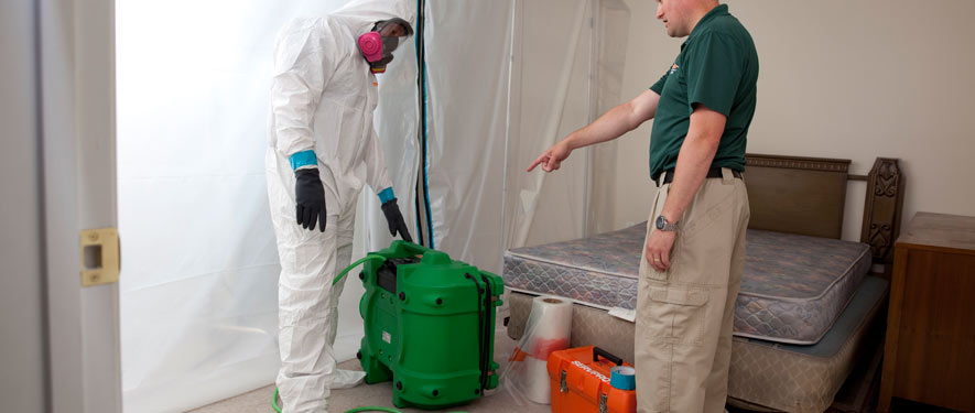 Issaquah, WA mold removal process